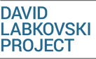 DAVID LABKOVSKI PROJECT